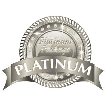 seo platinum level
